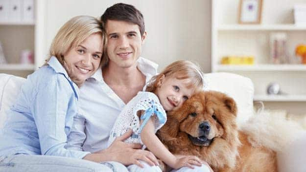 Wills & Trusts dog-young-family Direct Wills New Malden